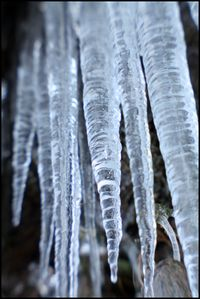 Icicles 2